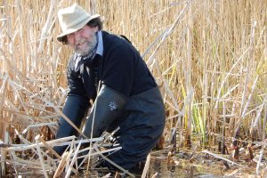David Nobbs in the reeds