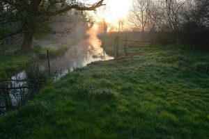 wheatfen dawn david nobbs