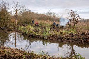 wheatfen broad volunteers by Ann kierridge